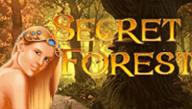 Автомат на деньги Secret Forest